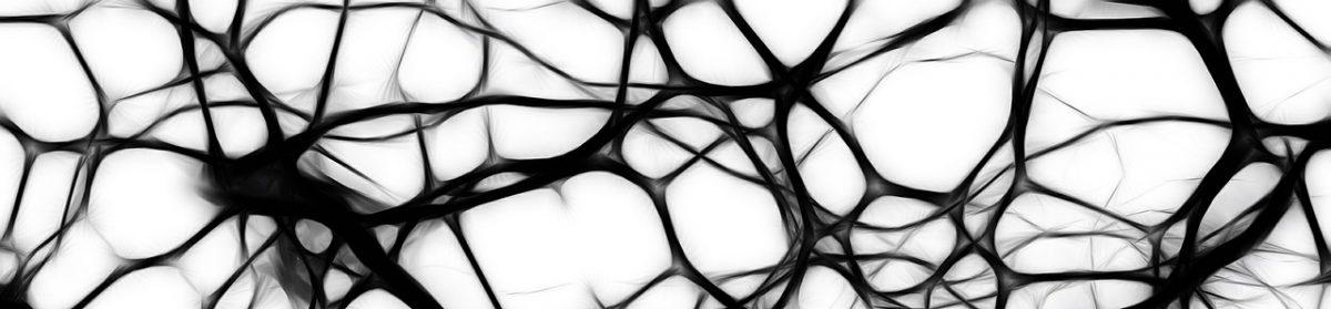 Neuropyschologue – Pierre leclef